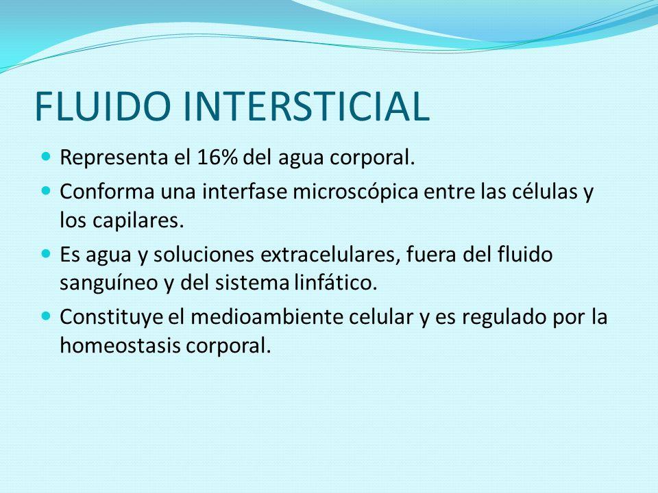FLUIDO INTERSTICIAL Representa el 16% del agua corporal. Conforma una interfase microscópica entre las células y los capilares. Es agua y soluciones e