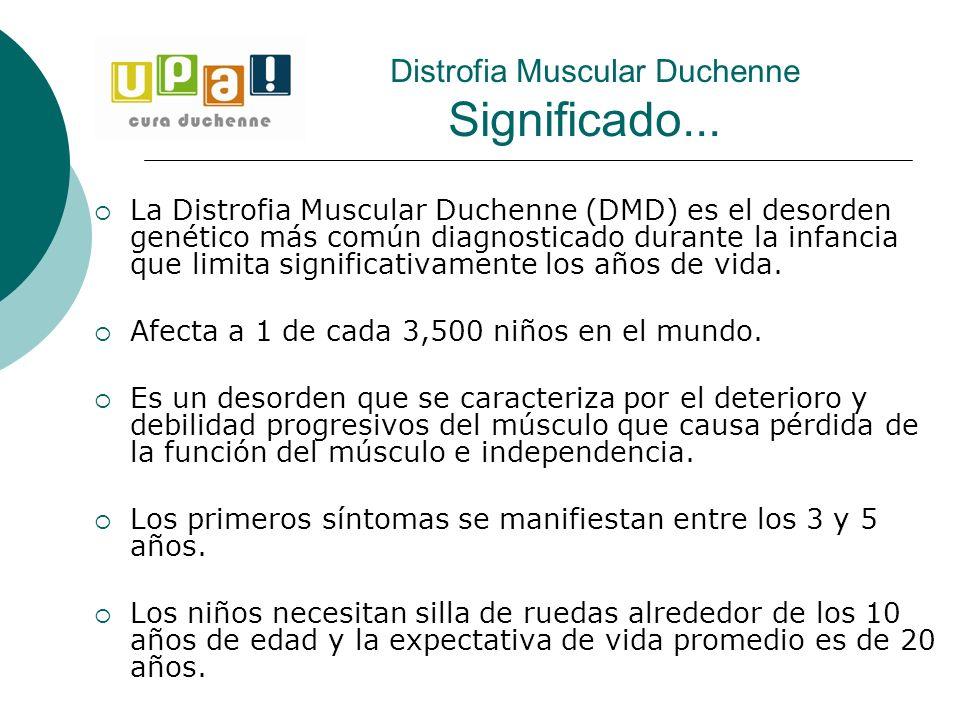 La Distrofia Muscular Duchenne (DMD) es el desorden genético más común diagnosticado durante la infancia que limita significativamente los años de vid