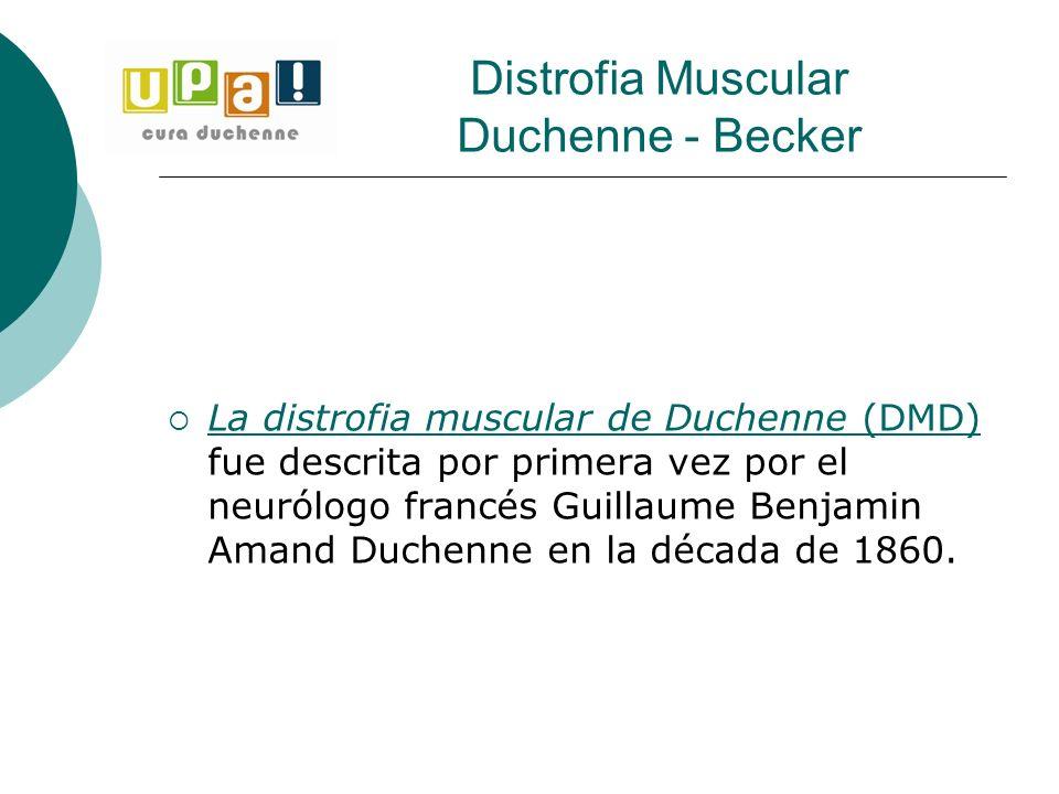 La distrofia muscular de Duchenne (DMD) fue descrita por primera vez por el neurólogo francés Guillaume Benjamin Amand Duchenne en la década de 1860.