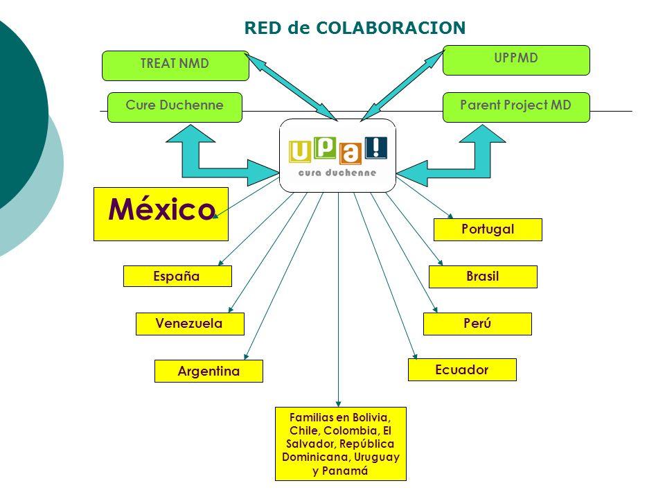 Cure Duchenne México España Venezuela Ecuador Argentina Familias en Bolivia, Chile, Colombia, El Salvador, República Dominicana, Uruguay y Panamá Perú
