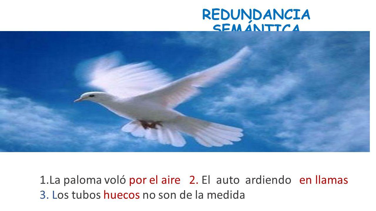 REDUNDANCIA SEMÁNTICA 1.La paloma voló por el aire 2.