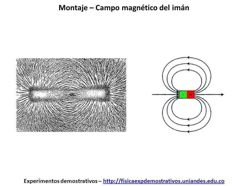 Montaje – Campo magnético del imán Experimentos demostrativos – http://fisicaexpdemostrativos.uniandes.edu.cohttp://fisicaexpdemostrativos.uniandes.ed