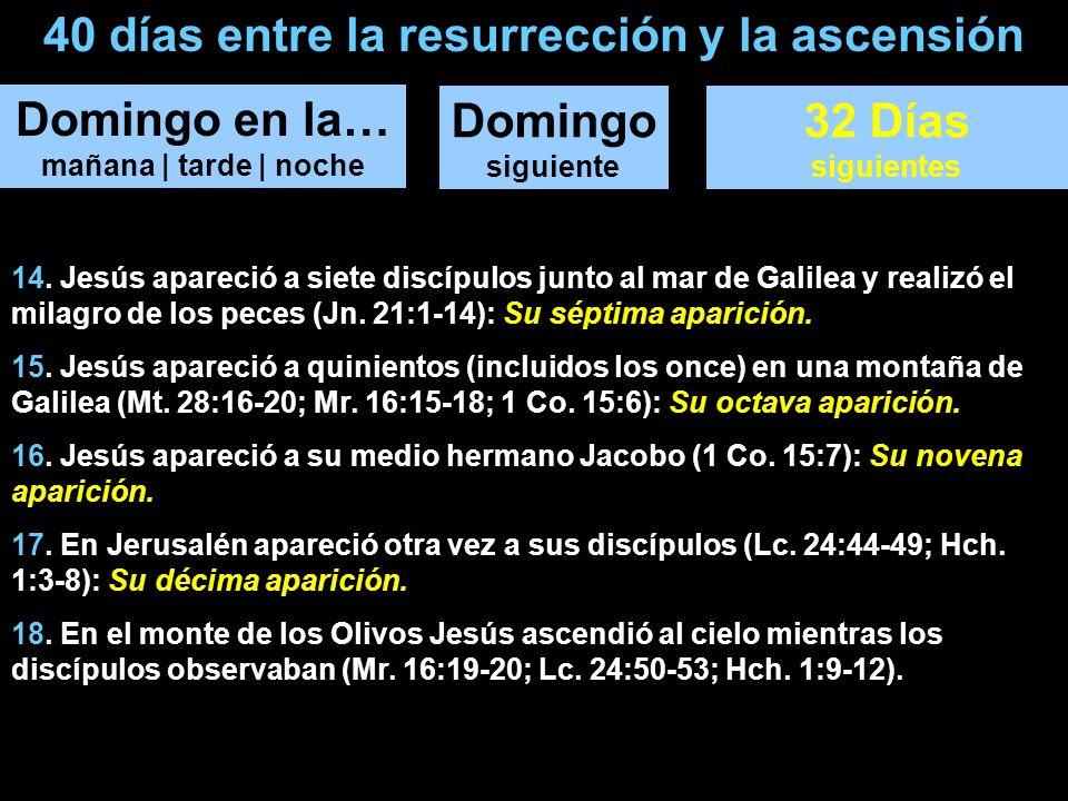 40 días entre la resurrección y la ascensión Domingo en la… mañana | tarde | noche Domingo siguiente 32 Días siguientes 14. Jesús apareció a siete dis