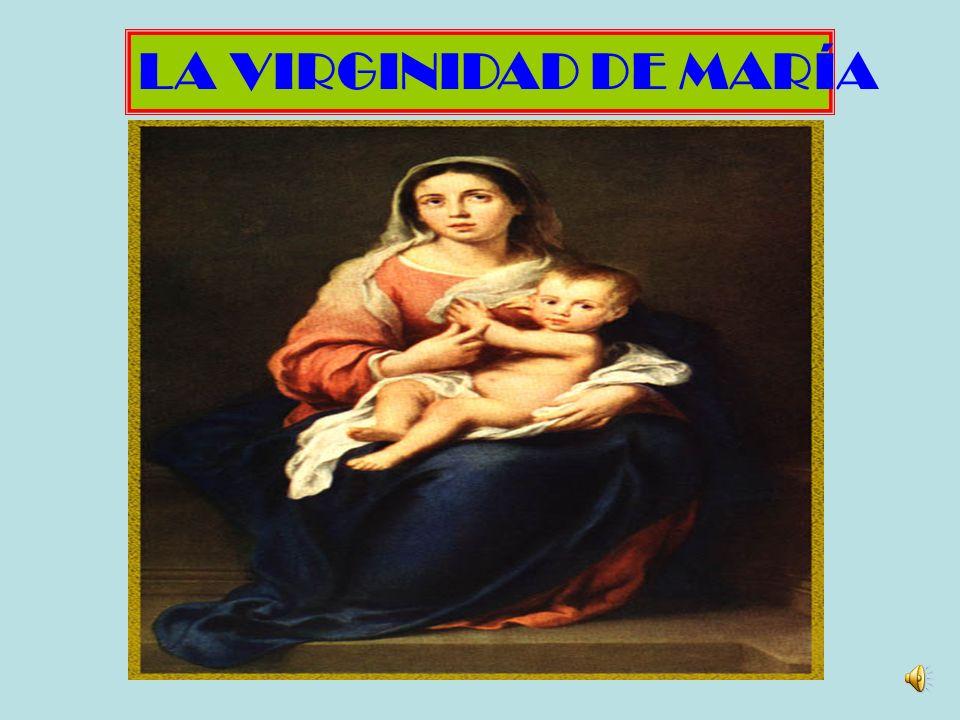 Llamada en los evangelios la Madre de Jesús (Juan 2,1; 19,25), María es aclamada bajo el impulso del Espíritu como la madre de mi Señor desde antes de