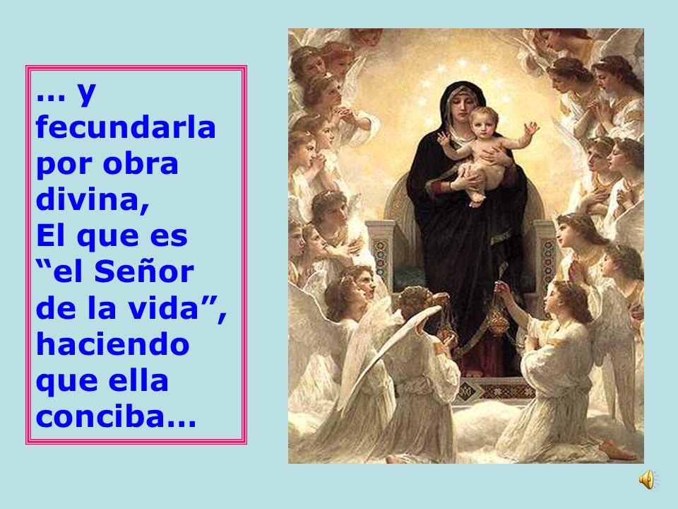 La misión del Espíritu Santo está siempre unida y ordenada a la del Hijo. El Espíritu Santo fue enviado para santificar el seno de la Virgen María…