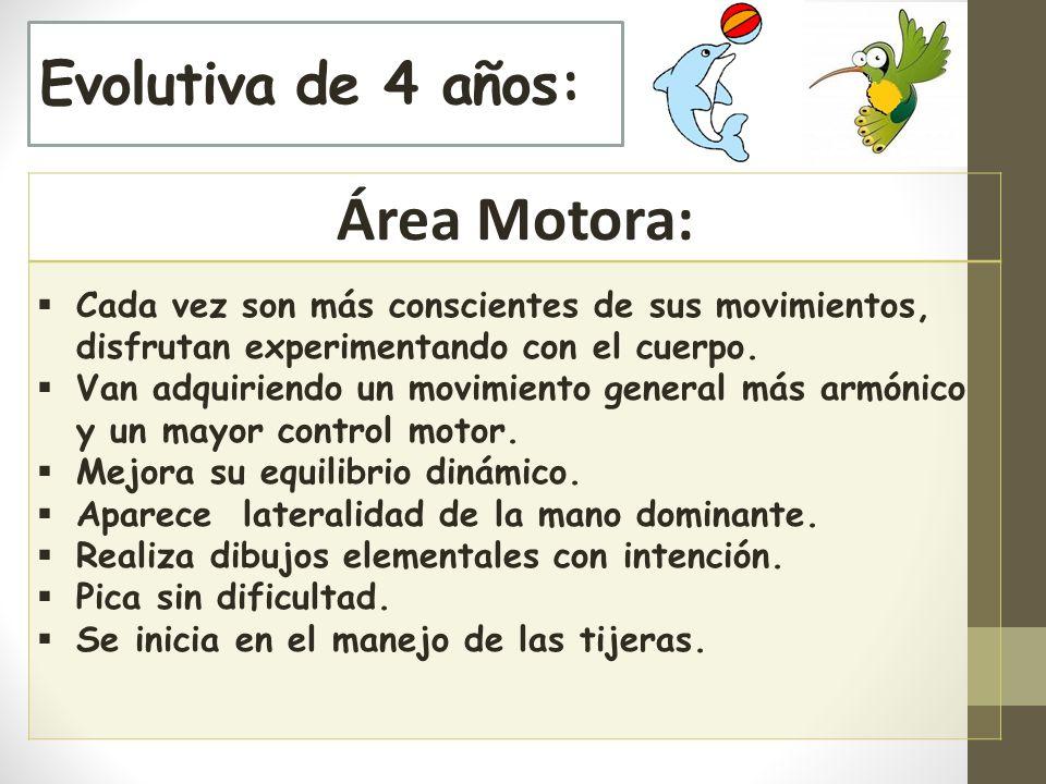 Evolutiva de 4 años: Área Motora: Cada vez son más conscientes de sus movimientos, disfrutan experimentando con el cuerpo.