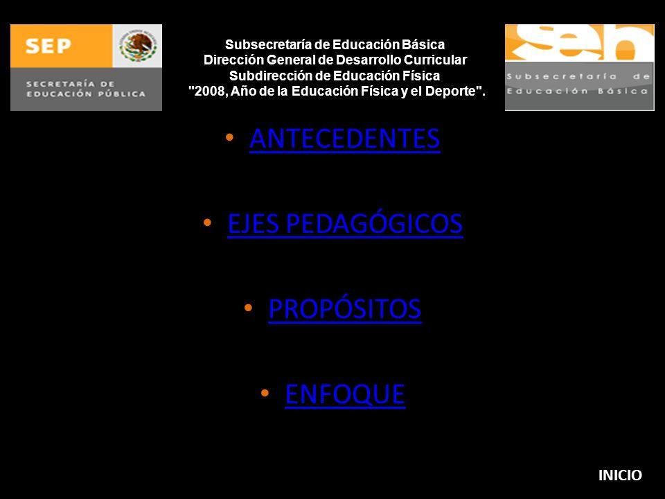 Subsecretaría de Educación Básica Dirección General de Desarrollo Curricular Subdirección de Educación Física 2008, Año de la Educación Física y el Deporte .