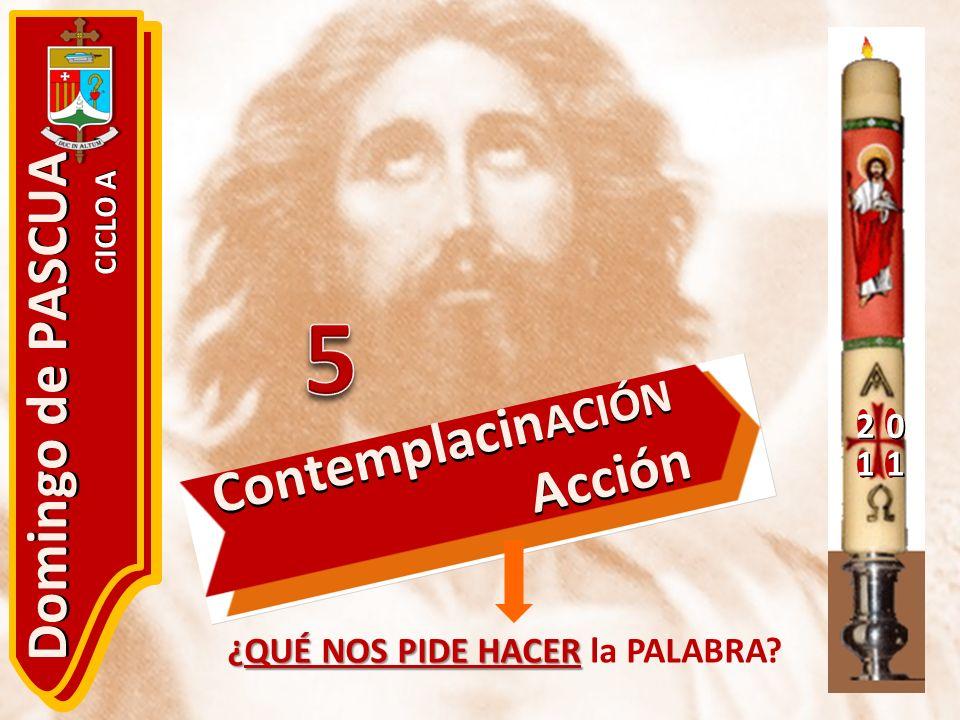20 11 Domingo de PASCUA CICLO A ¿QUÉ NOS PIDE HACER ¿QUÉ NOS PIDE HACER la PALABRA? Contemplacin ACIÓN Acción Acción