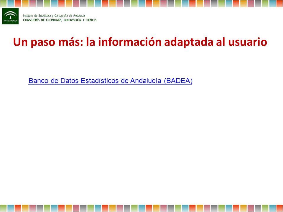 Un paso más: la información adaptada al usuario Banco de Datos Estadísticos de Andalucía (BADEA)
