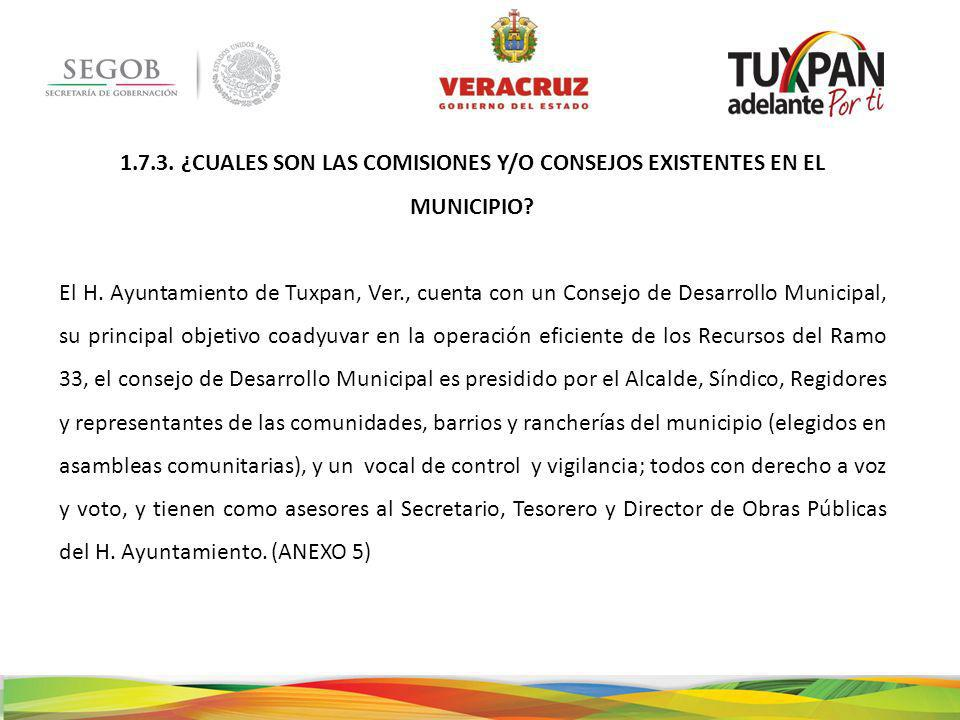 1.7.3.¿CUALES SON LAS COMISIONES Y/O CONSEJOS EXISTENTES EN EL MUNICIPIO.