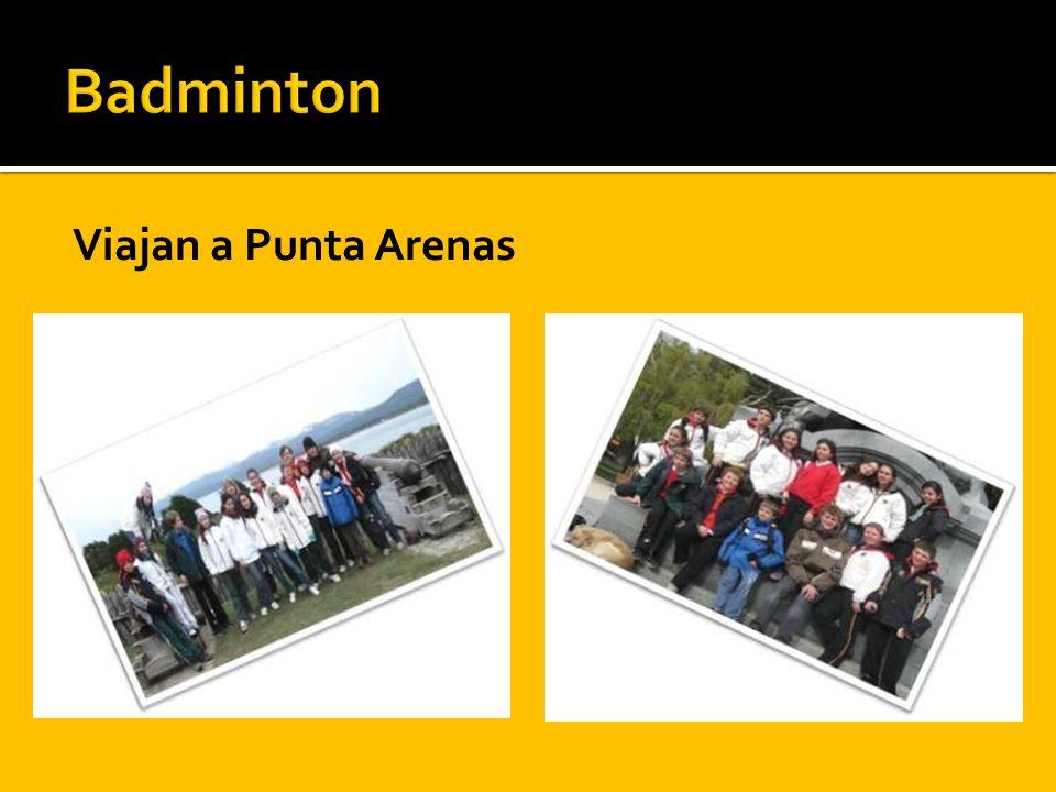 Viajan a Punta Arenas
