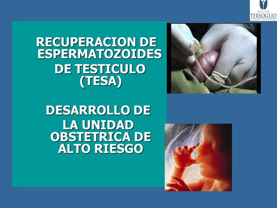 RECUPERACION DE ESPERMATOZOIDES RECUPERACION DE ESPERMATOZOIDES DE TESTICULO (TESA) DE TESTICULO (TESA) DESARROLLO DE DESARROLLO DE LA UNIDAD OBSTETRI