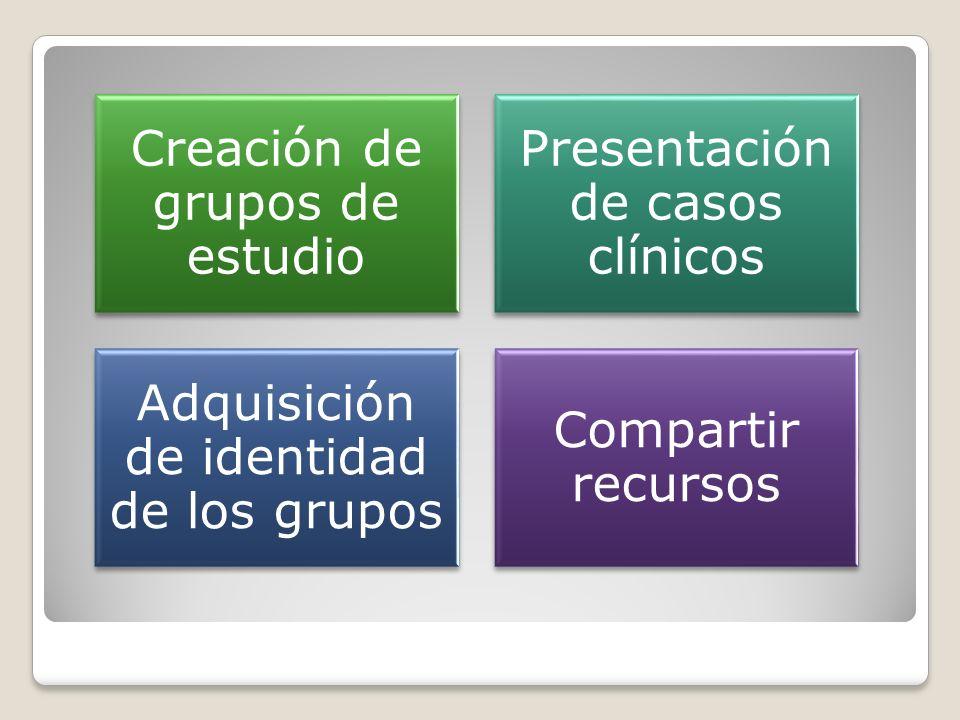 Creación de grupos de estudio Presentación de casos clínicos Adquisición de identidad de los grupos Compartir recursos