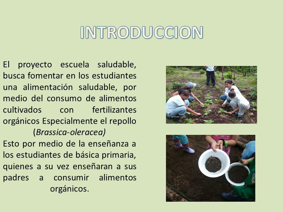 El proyecto escuela saludable, busca fomentar en los estudiantes una alimentación saludable, por medio del consumo de alimentos cultivados con fertili