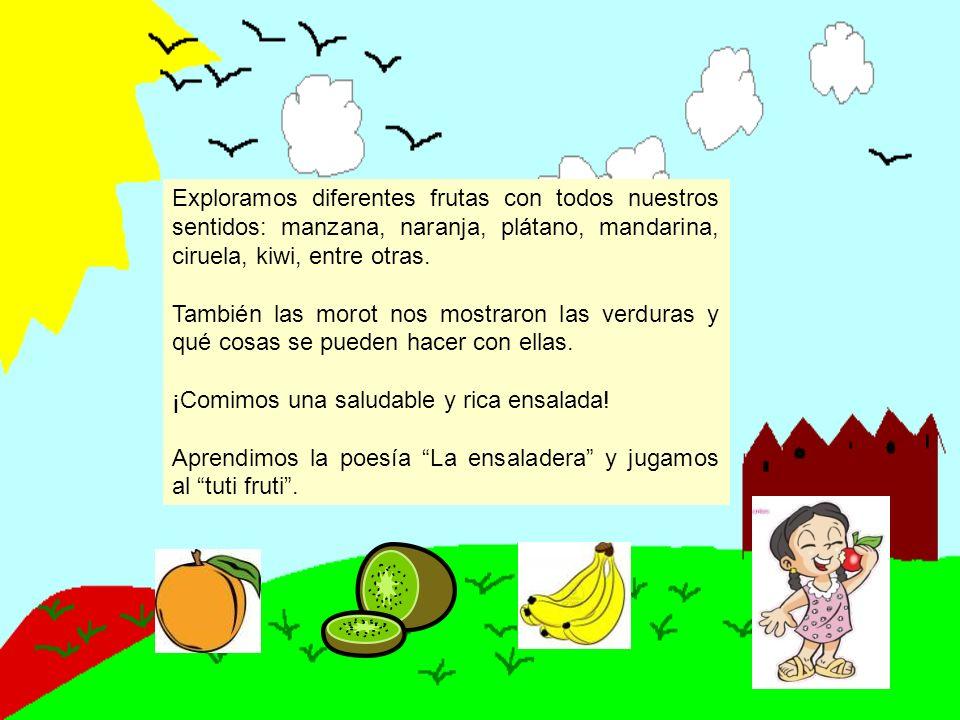 Exploramos diferentes frutas con todos nuestros sentidos: manzana, naranja, plátano, mandarina, ciruela, kiwi, entre otras.