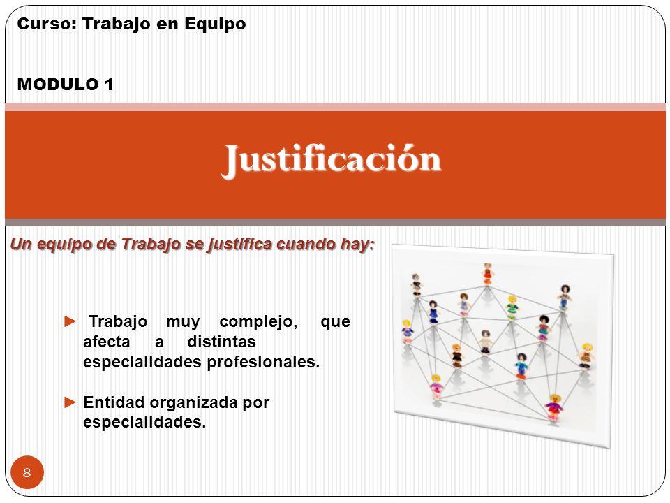 Curso: Trabajo en Equipo MODULO 1 7 Grupo de Trabajo Cada persona responde individualmente. Sus miembros tienen formación similar (no complementarios)