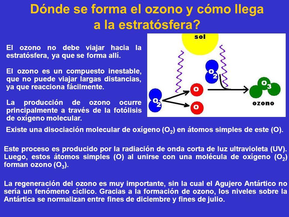 Dónde se forma el ozono y cómo llega a la estratósfera? Existe una disociación molecular de oxígeno (O 2 ) en átomos simples de este (O). Este proceso