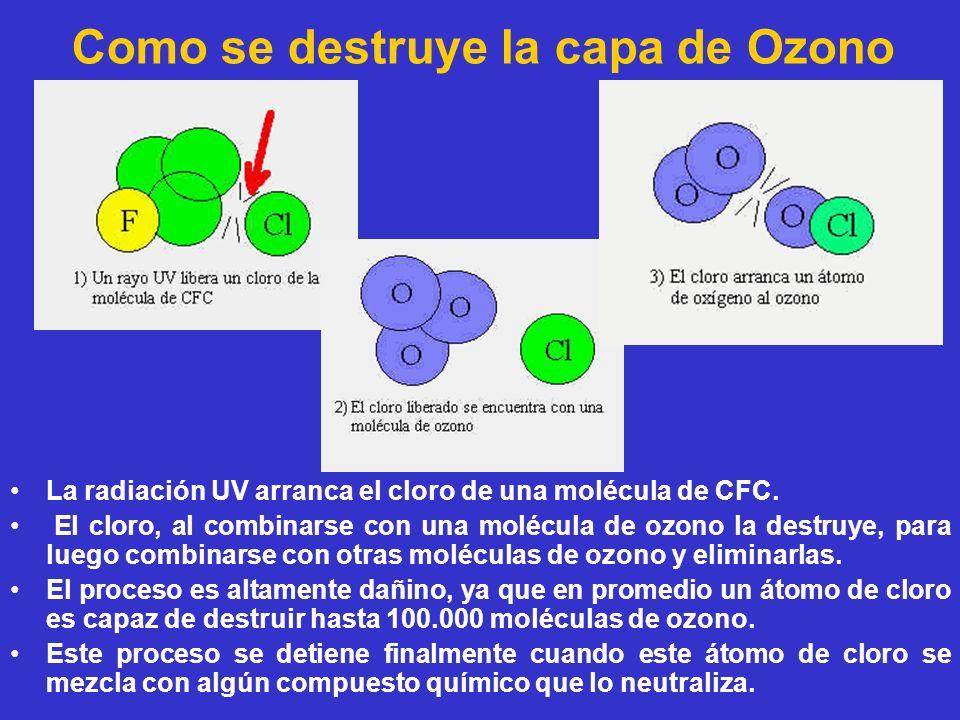 Como se destruye la capa de Ozono La radiación UV arranca el cloro de una molécula de CFC. El cloro, al combinarse con una molécula de ozono la destru