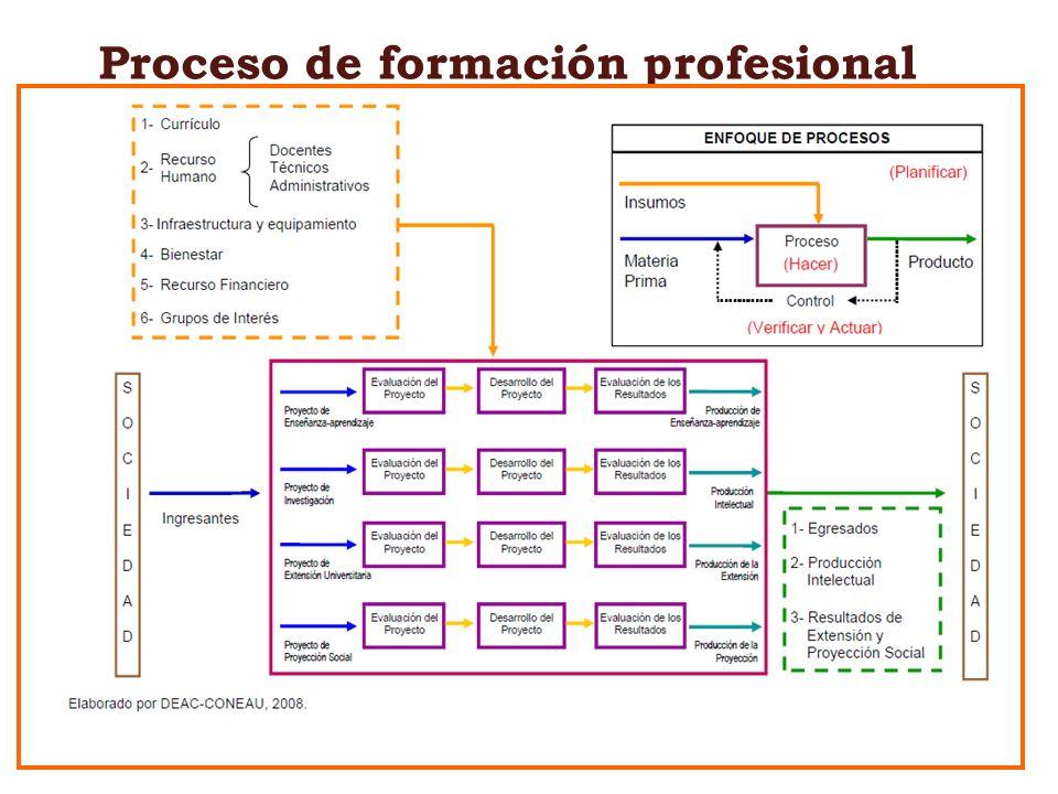 Proceso de formación profesional