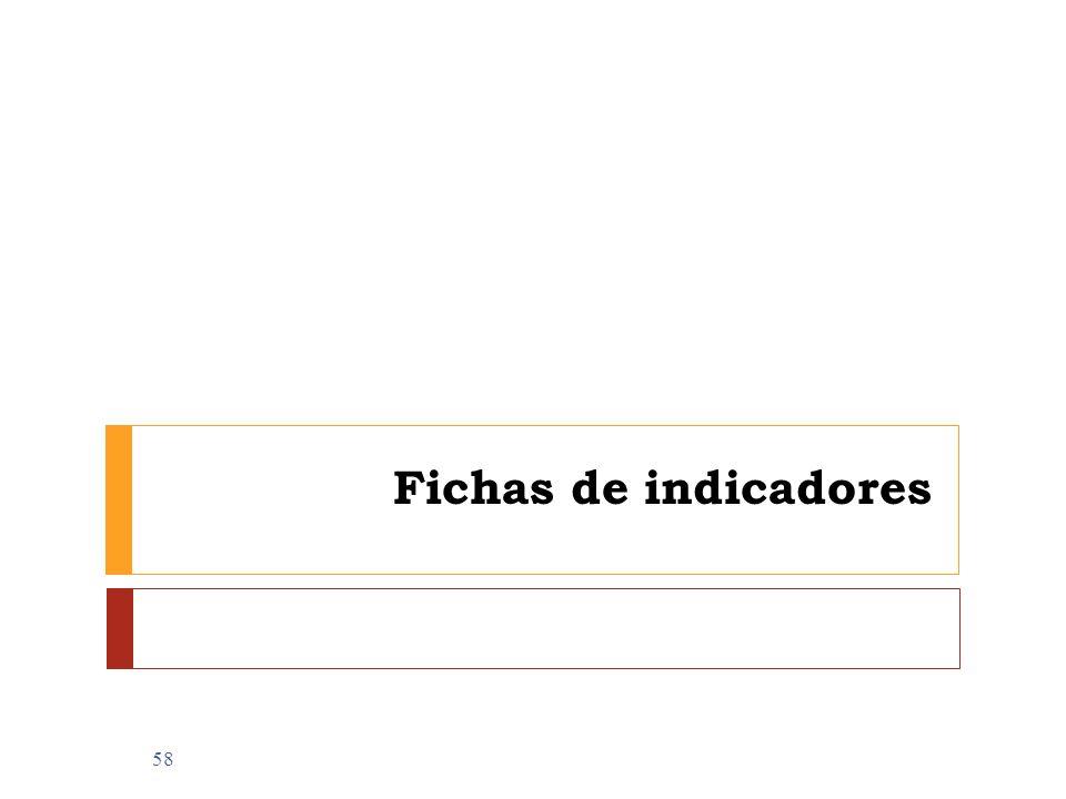 Fichas de indicadores 58