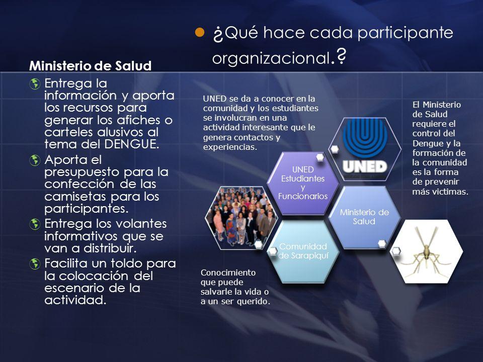 Ministerio de Salud ¿ Qué hace cada participante organizacional.? Entrega la información y aporta los recursos para generar los afiches o carteles alu