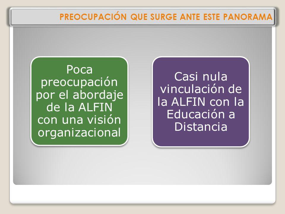 PREOCUPACIÓN QUE SURGE ANTE ESTE PANORAMA Poca preocupación por el abordaje de la ALFIN con una visión organizacional Casi nula vinculación de la ALFIN con la Educación a Distancia