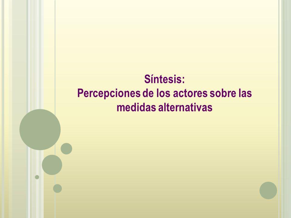 Síntesis: Percepciones de los actores sobre las medidas alternativas