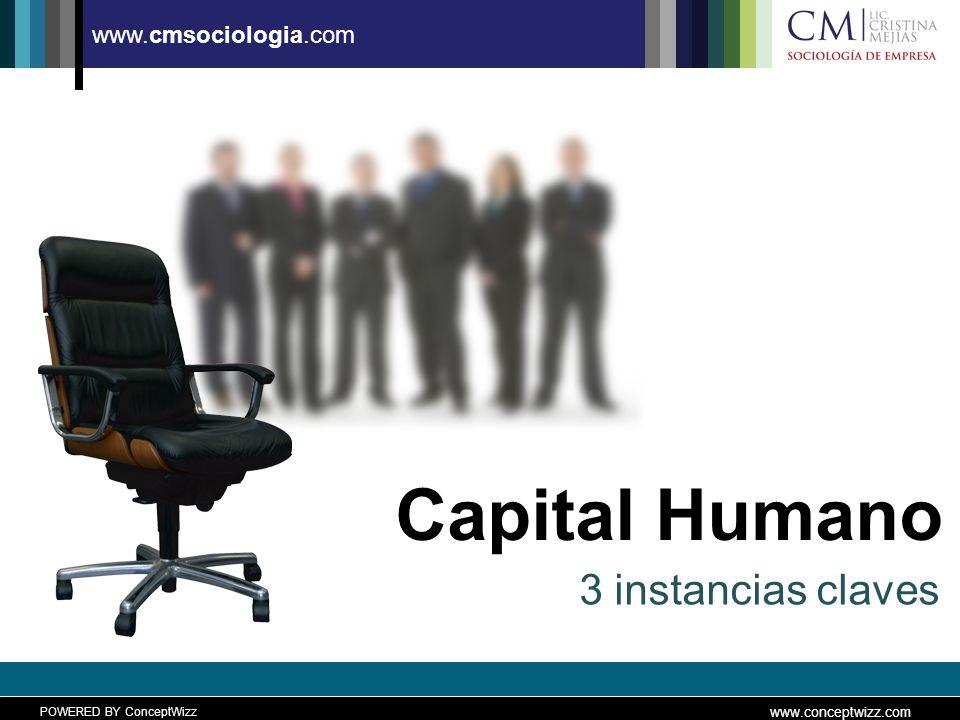 POWERED BY ConceptWizz www.conceptwizz.com www.cmsociologia.com Factores a tener en cuenta Leer en detalle el CV, antes… Observar el comportamiento no verbal del candidato.