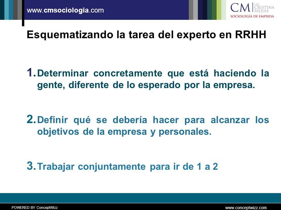 POWERED BY ConceptWizz www.conceptwizz.com www.cmsociologia.com Esquematizando la tarea del experto en RRHH 1.