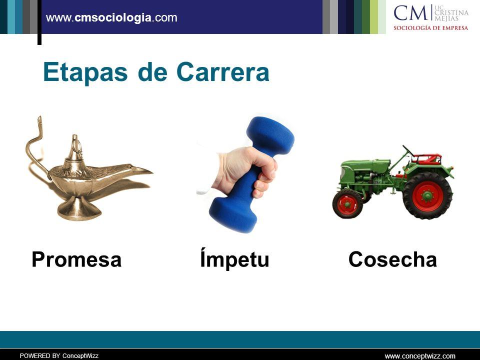 POWERED BY ConceptWizz www.conceptwizz.com www.cmsociologia.com Etapas de Carrera PromesaÍmpetuCosecha