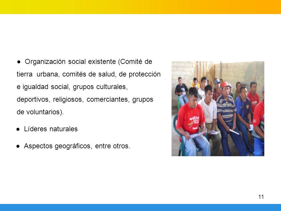 11 Organización social existente (Comité de tierra urbana, comités de salud, de protección e igualdad social, grupos culturales, deportivos, religiosos, comerciantes, grupos de voluntarios).