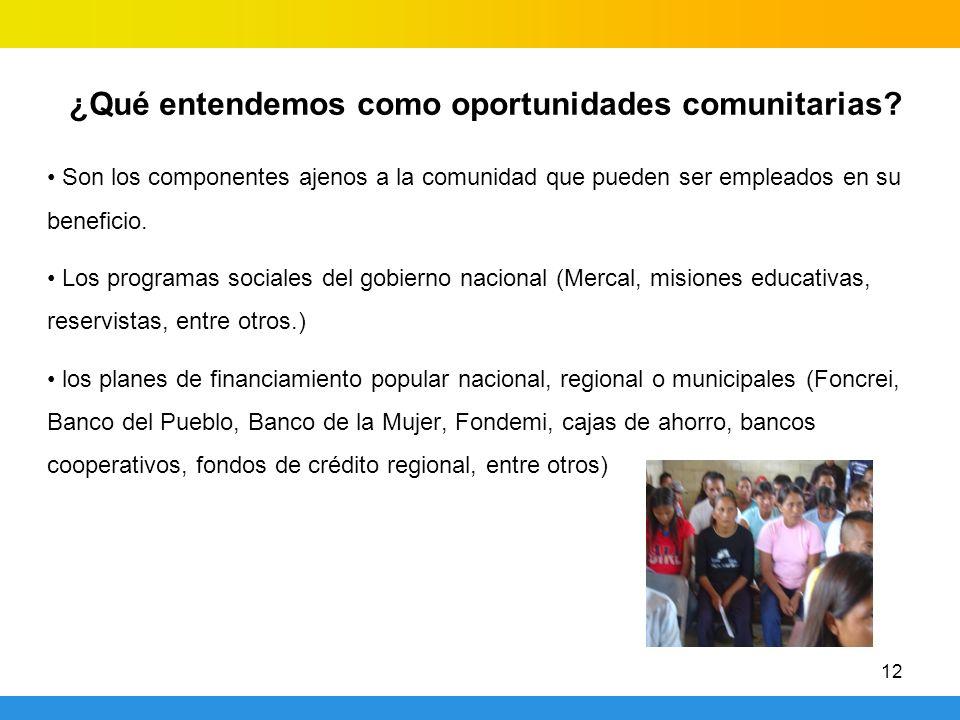 12 Son los componentes ajenos a la comunidad que pueden ser empleados en su beneficio. Los programas sociales del gobierno nacional (Mercal, misiones