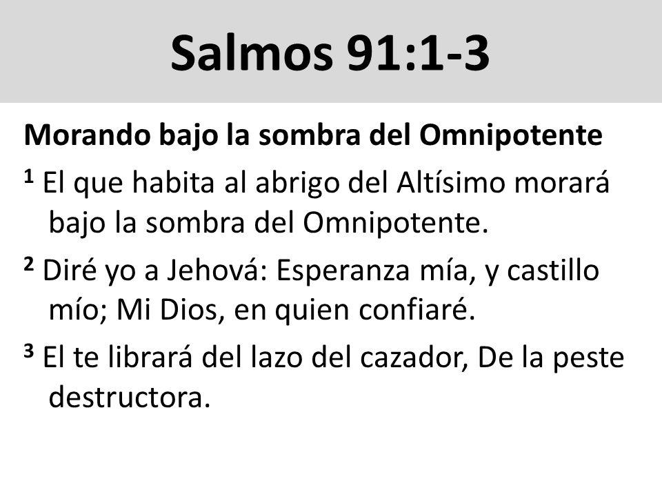 Salmos 91:4-6 4 Con sus plumas te cubrirá, Y debajo de sus alas estarás seguro; escudo y adarga es su verdad.