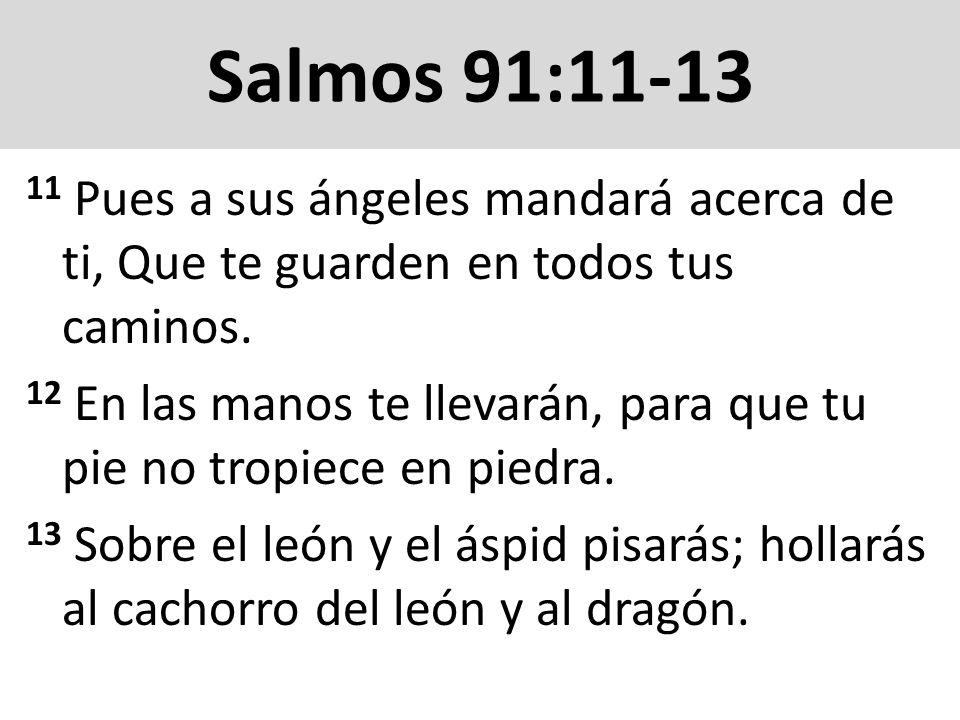 Salmos 91:14-16 14 Por cuanto en mí ha puesto su amor, yo también lo libraré; Le pondré en alto, por cuanto ha conocido mi nombre.