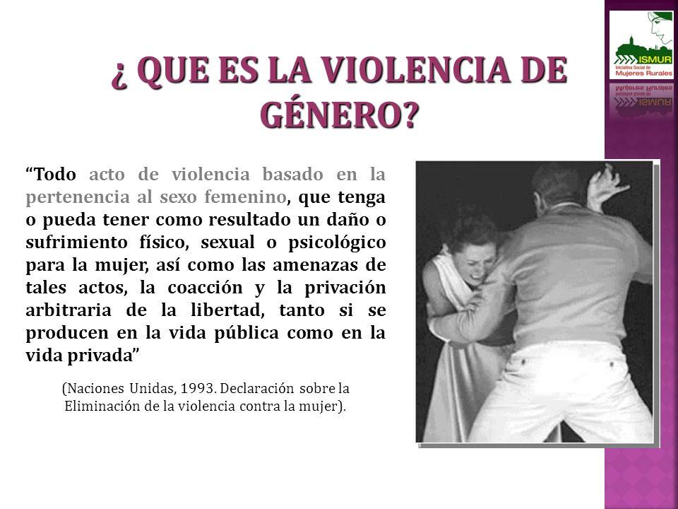 Todo acto de violencia basado en la pertenencia al sexo femenino, que tenga o pueda tener como resultado un daño o sufrimiento físico, sexual o psicológico para la mujer, así como las amenazas de tales actos, la coacción y la privación arbitraria de la libertad, tanto si se producen en la vida pública como en la vida privada (Naciones Unidas, 1993.