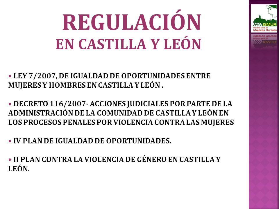 REGULACIÓN LEY 7/2007, DE IGUALDAD DE OPORTUNIDADES ENTRE MUJERES Y HOMBRES EN CASTILLA Y LEÓN.