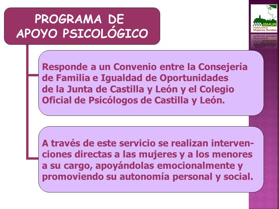 PROGRAMA DE APOYO PSICOLÓGICO Responde a un Convenio entre la Consejería de Familia e Igualdad de Oportunidades de la Junta de Castilla y León y el Colegio Oficial de Psicólogos de Castilla y León.
