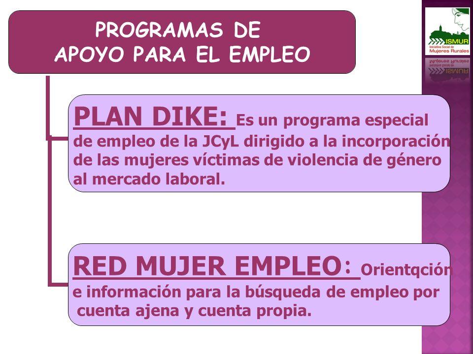 PROGRAMAS DE APOYO PARA EL EMPLEO PLAN DIKE: Es un programa especial de empleo de la JCyL dirigido a la incorporación de las mujeres víctimas de violencia de género al mercado laboral.