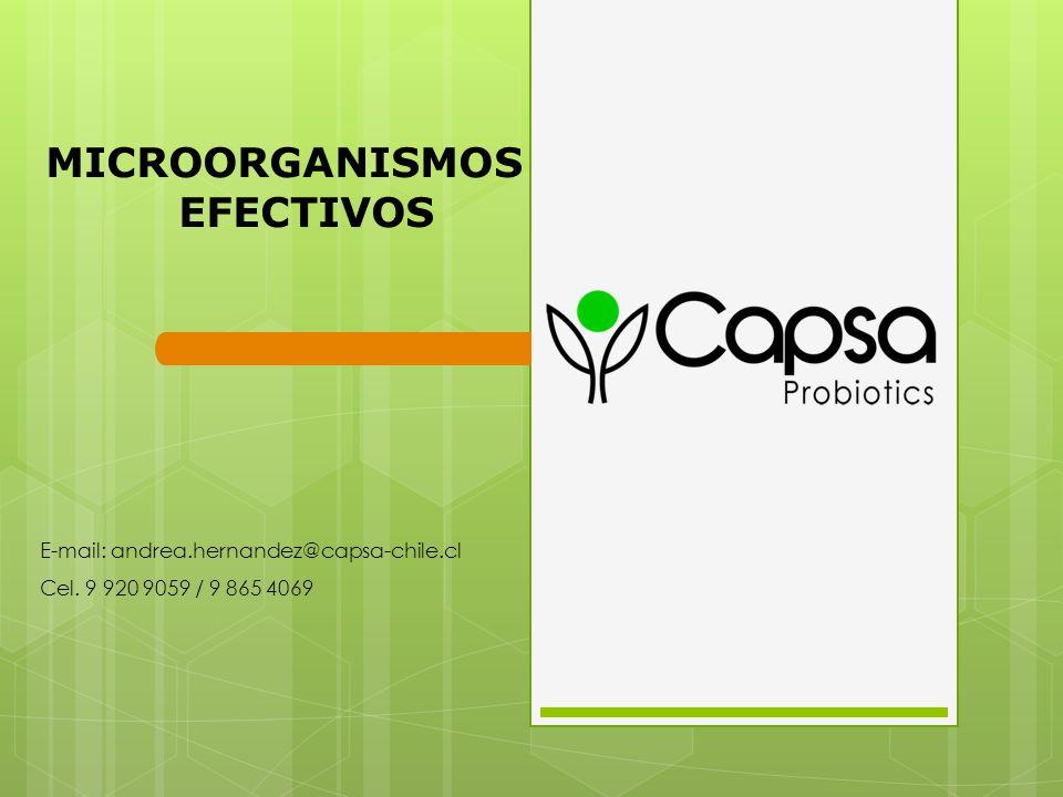MICROORGANISMOS EFECTIVOS E-mail: andrea.hernandez@capsa-chile.cl Cel. 9 920 9059 / 9 865 4069