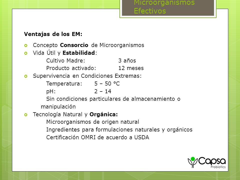 Ventajas de los EM: Concepto Consorcio de Microorganismos Vida Útil y Estabilidad: Cultivo Madre: 3 años Producto activado: 12 meses Supervivencia en