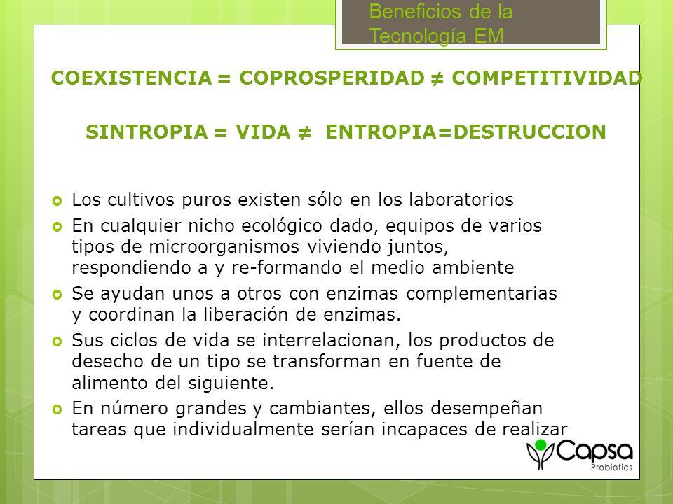 Beneficios de la Tecnología EM Los cultivos puros existen sólo en los laboratorios En cualquier nicho ecológico dado, equipos de varios tipos de micro