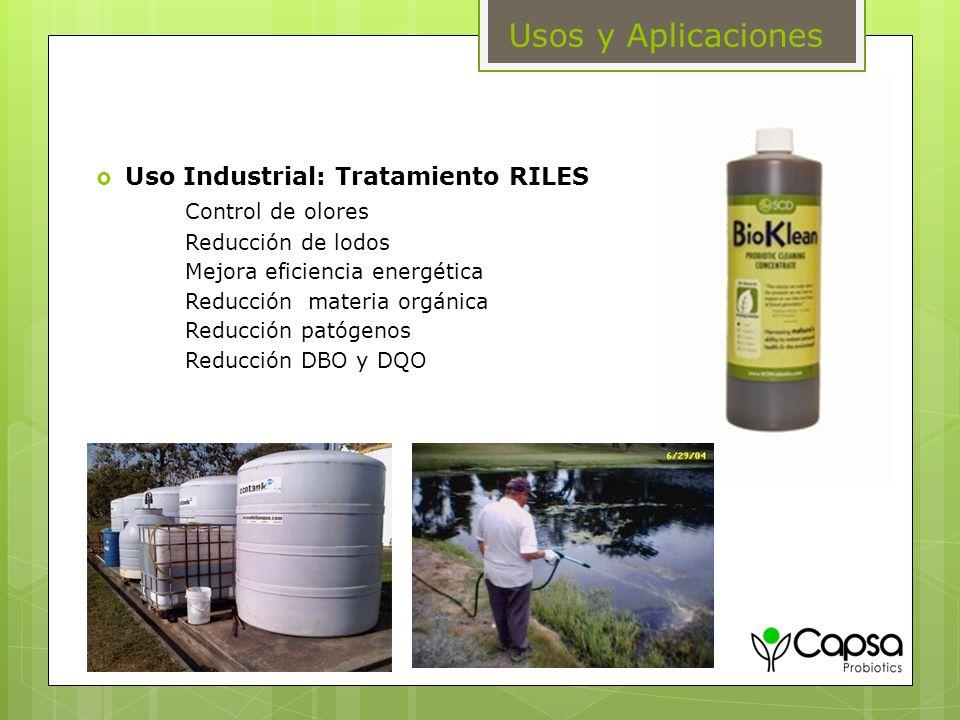 Usos y Aplicaciones Uso Industrial: Tratamiento RILES Control de olores Reducción de lodos Mejora eficiencia energética Reducción materia orgánica Red