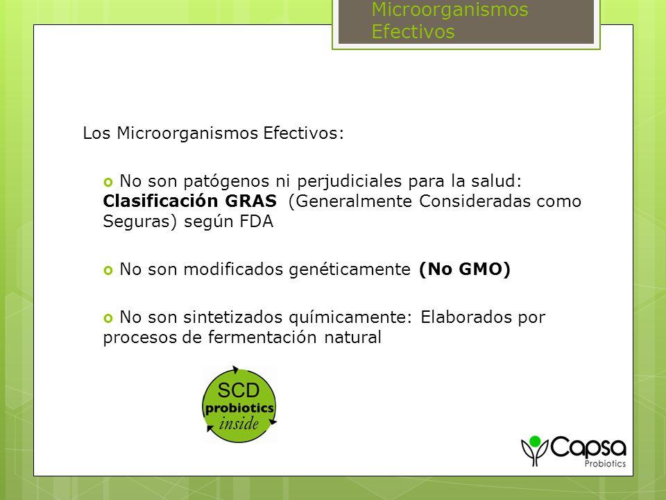 Microorganismos Efectivos Los Microorganismos Efectivos: No son patógenos ni perjudiciales para la salud: Clasificación GRAS (Generalmente Considerada