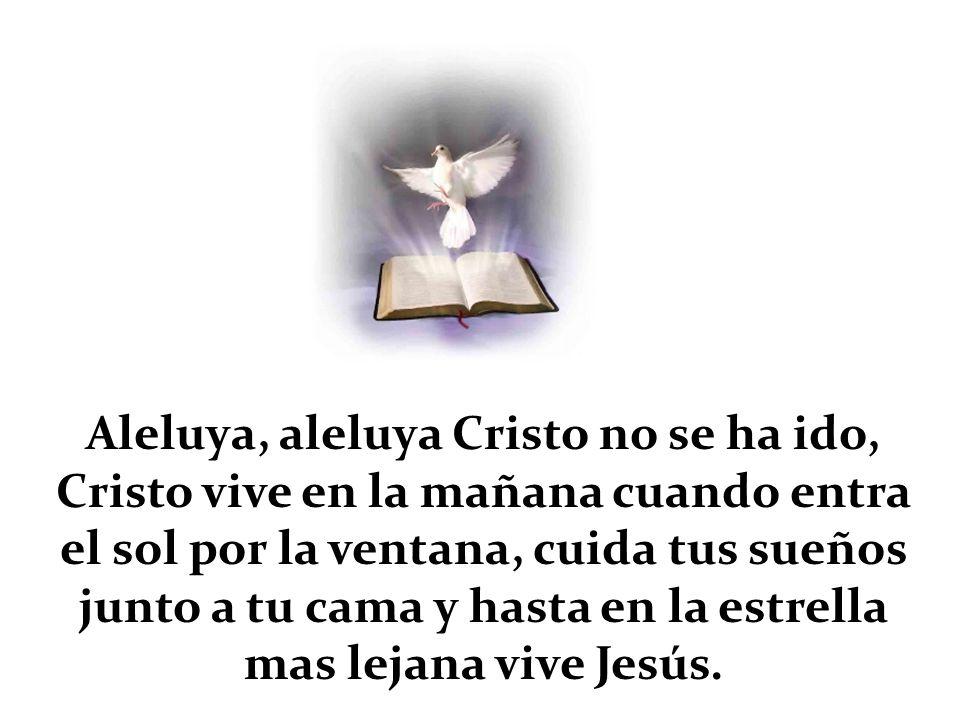 Aleluya, aleluya Cristo no se ha ido, Cristo vive en la mañana cuando entra el sol por la ventana, cuida tus sueños junto a tu cama y hasta en la estr