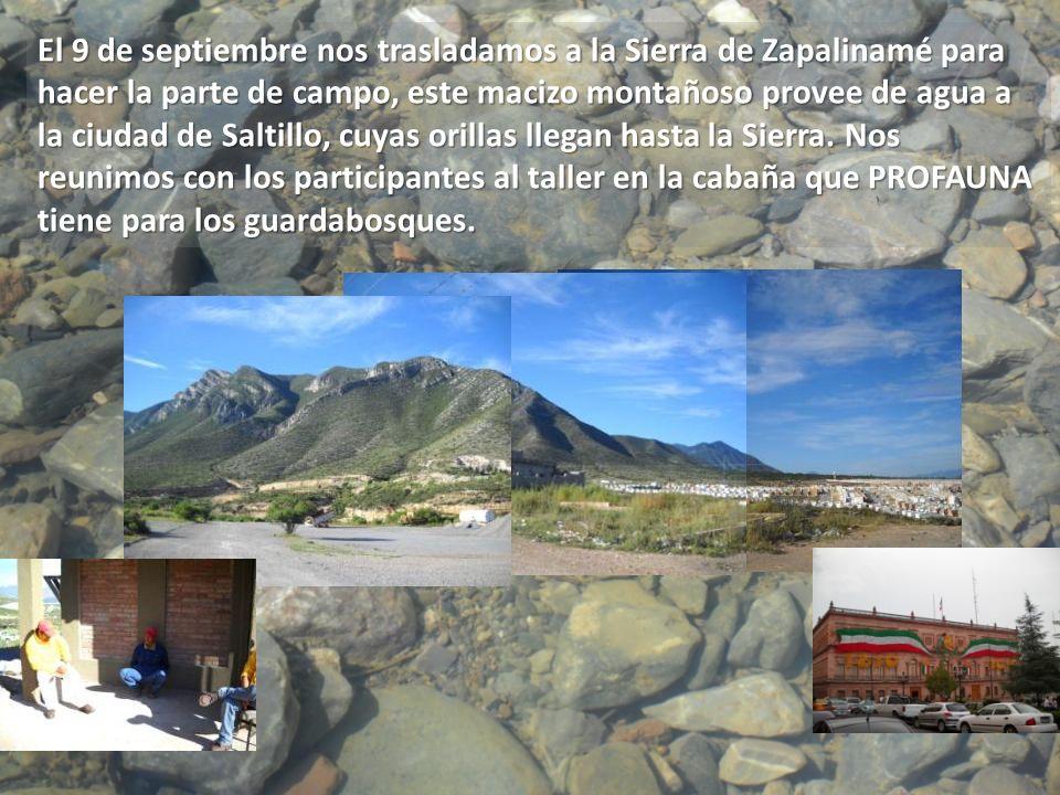 El 9 de septiembre nos trasladamos a la Sierra de Zapalinamé para hacer la parte de campo, este macizo montañoso provee de agua a la ciudad de Saltill