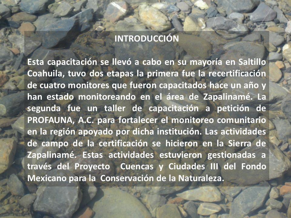 INTRODUCCIÓN Esta capacitación se llevó a cabo en su mayoría en Saltillo Coahuila, tuvo dos etapas la primera fue la recertificación de cuatro monitor