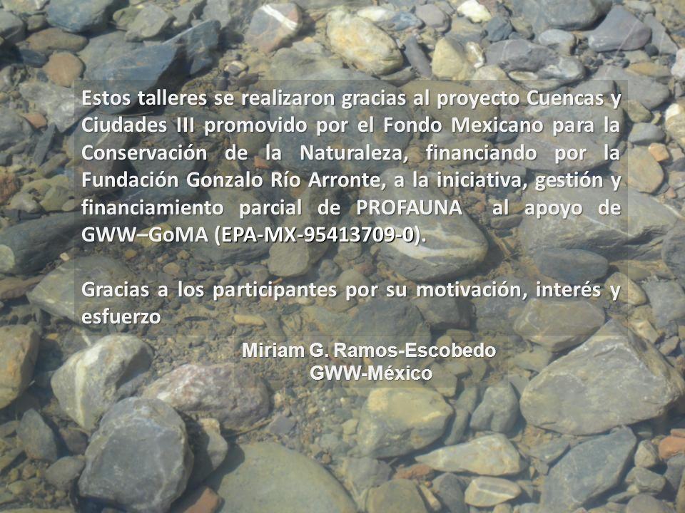 Estos talleres se realizaron gracias al proyecto Cuencas y Ciudades III promovido por el Fondo Mexicano para la Conservación de la Naturaleza, financi