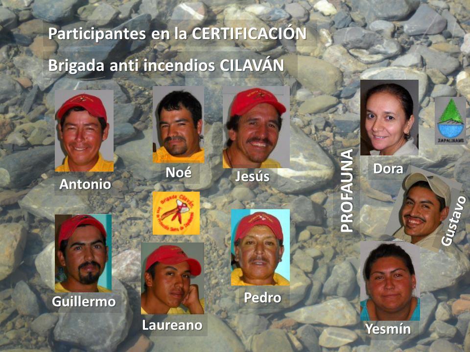 Antonio Noé Jesús Pedro Guillermo Laureano Yesmín Dora Gustavo Participantes en la CERTIFICACIÓN PROFAUNA Brigada anti incendios CILAVÁN