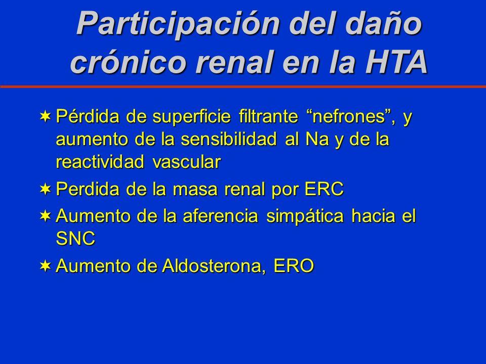 Participación del daño crónico renal en la HTA Pérdida de superficie filtrante nefrones, y aumento de la sensibilidad al Na y de la reactividad vascul