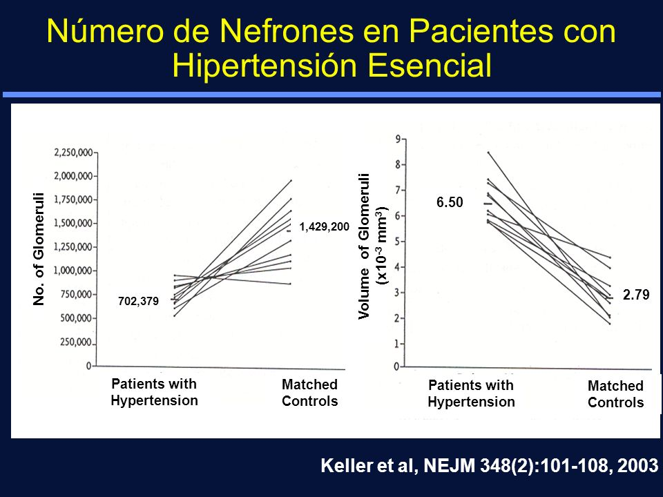 Número de Nefrones en Pacientes con Hipertensión Esencial Keller et al, NEJM 348(2):101-108, 2003 Patients with Hypertension Matched Controls Patients